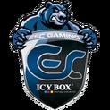 ESC logo 150.png