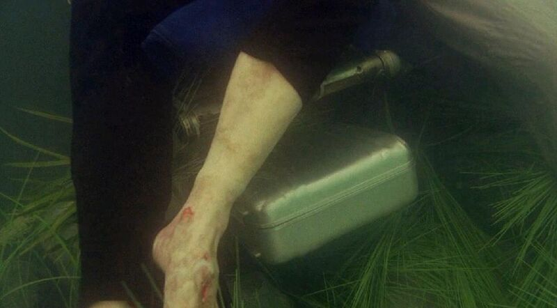 The Suitcase Under the Dead Body