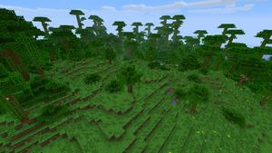 Jungle Edge.png