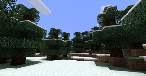 Snowy Forest.png