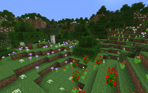 Flower forest 2.png