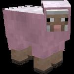 Pink sheep.png