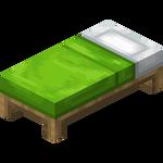 Hellgrünes Bett.png