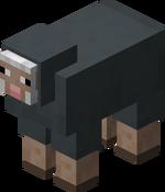 Graues Schaf.png