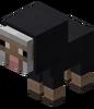 Bébé mouton noir.png