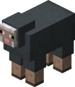 Gray Sheep.png