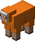 Orange Sheep.png