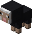 Baby Black Sheep.png