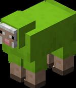 Lime Sheep.png