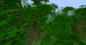 Jungle 12w03a.png