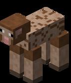 Owca ostrzyżona brązowa.png