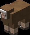 Owca brązowa przed 1.12.png
