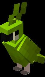 Zielona papuga.png