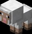 Owca mała.png