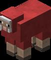 Owca czerwona przed 1.12.png