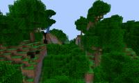 Дождливый лес (ExtrabiomesXL).png