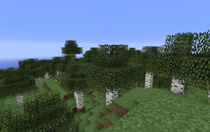 Берёзовый лес.png