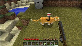 Кит и кот 3.3.5 рецепт 3.3.5
