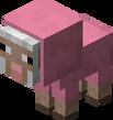 Baby Pink Sheep.png
