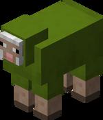 Green Sheep.png