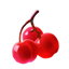 Cherryicon.png