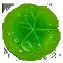 Lotus Leaf.png