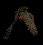 Hawk 4.png