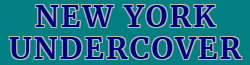New York Undercover Wiki