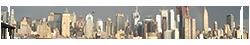 New York City Wiki