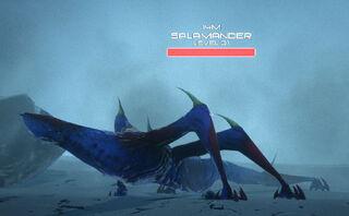 Salamander3.jpg
