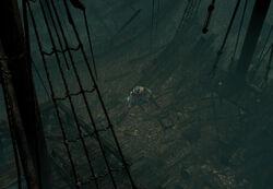 The Ship Graveyard area screenshot.jpg