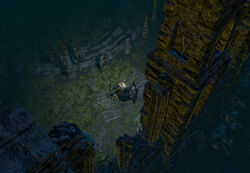 The Fellshrine Ruins area screenshot.jpg