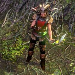 Tora Master of the Hunt