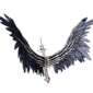 Raven Wings.png