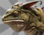Proad Bestairy Icon.png