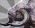DinocerosIMG.png