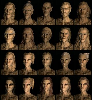Nord human race face compilation.