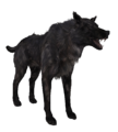 Wolf black.png