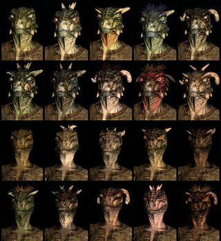 Argonian lizard-men race face compilation.