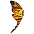 ButterflyWing.png