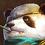 T Odin Panda Icon.png