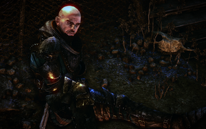 Witcher2-bolton-01.png
