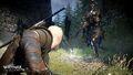 Tw3 e3 2014 screenshot - Geralt battling a general of the Hunt.jpg