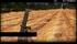 CMDO 3-In Mortar