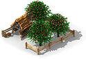Applefarm.jpg