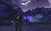 Champion Shadowlands 12July10 01.jpg