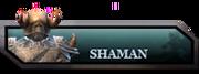 Shaman Bar.png