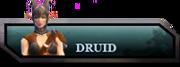 Druid bar.png