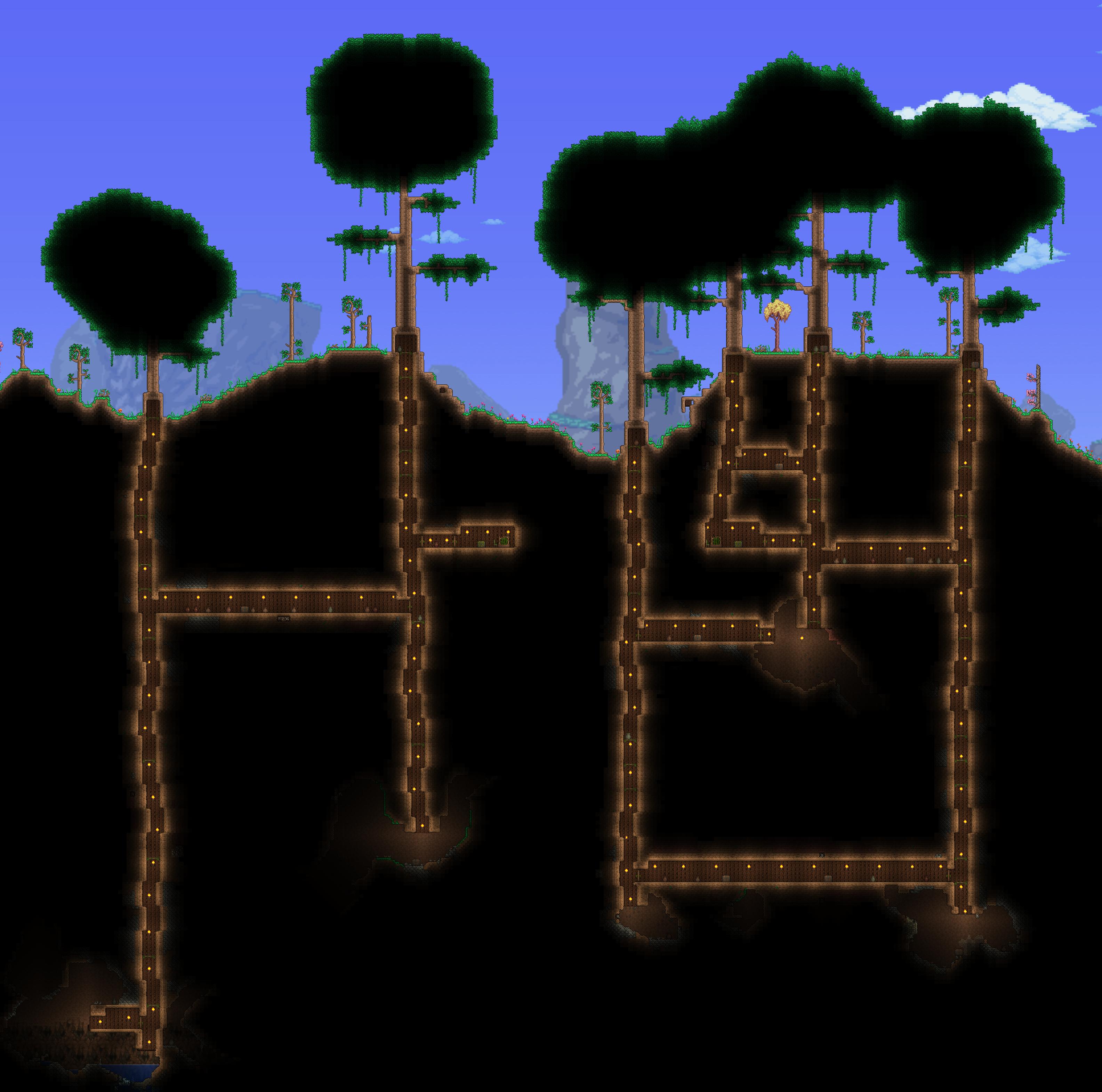 6 棵生命树