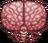 크툴루의 뇌.png